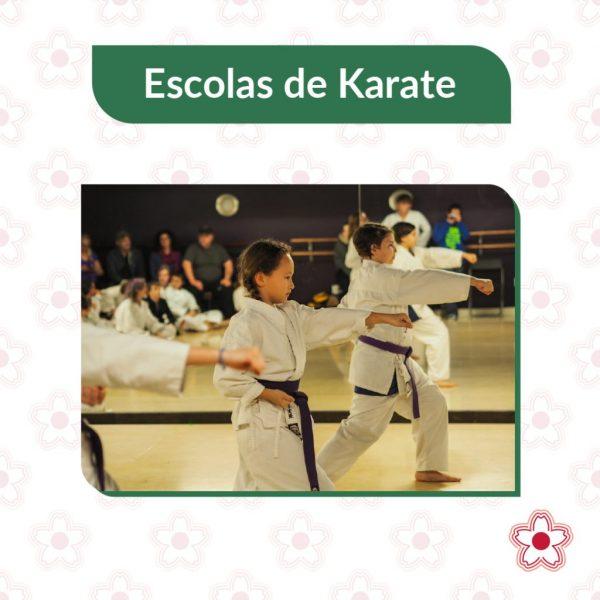A Federação Mundial de Karate (World Karate Federation - WKF) reconhece oficialmente apenas os seguintes estilos, todos fundados antes da II Guerra Mundial.